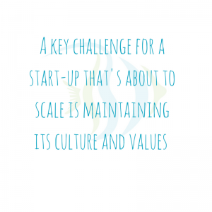 Start-up culture scaling workplace culture