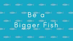 Be a Bigger FIsh cover art